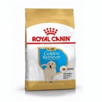 royal canin golden junior/puppy
