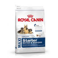 Royal Canin Maxi Starter 4kg dog food