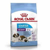 royal canin giant starter new