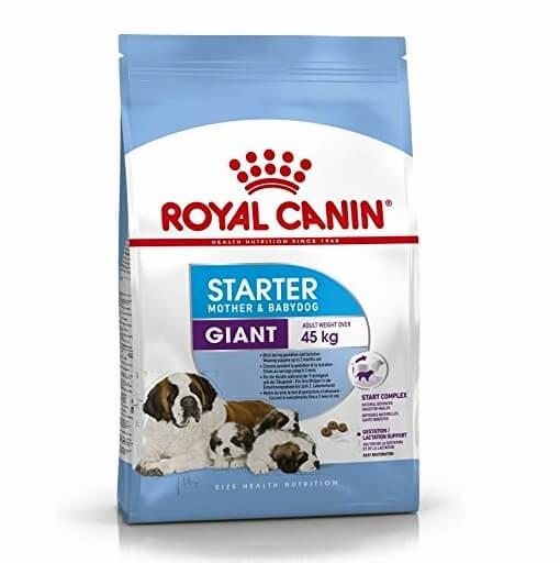royal canin giant starter new