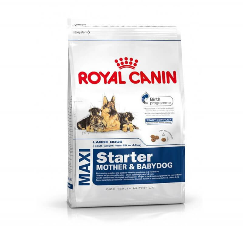 Royal Canin Maxi Starter 1kg dog food