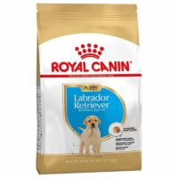 royal canin lab puppy junior