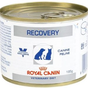 royal canin recovery can