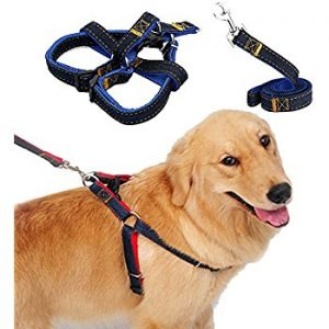 Dog/cat collars and leash