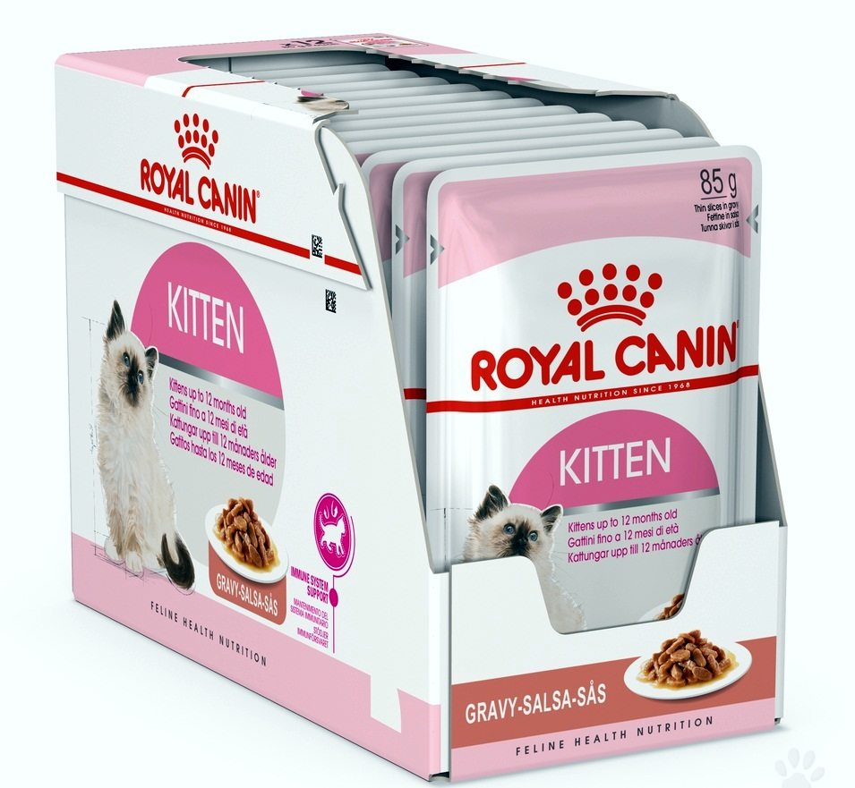 Best Cat Food In India