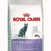 royal canin sterilised 37 cat food