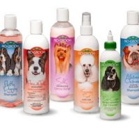 Pet Shampoo and Conditioner