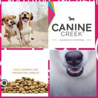 Canine Creek Dog food