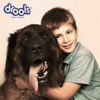 Drools Dog/Cat food