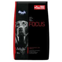 drools focus adult 12kg+1kg free