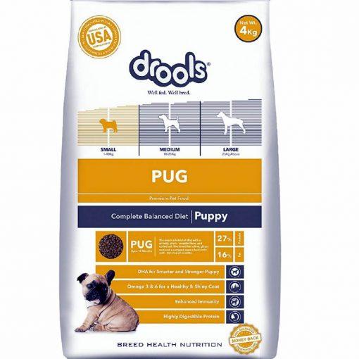 drools pug puppy