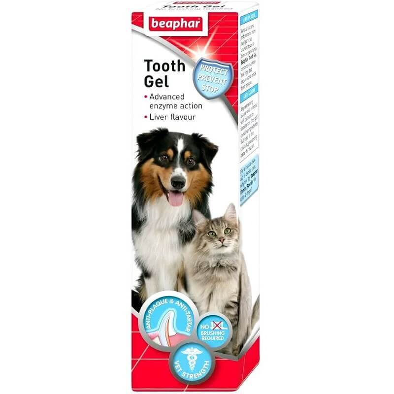 beaphar teeth gel