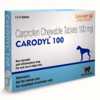 carodyl dog pain killer 100mg