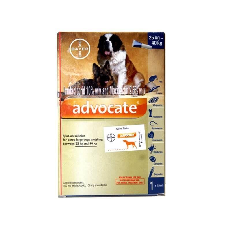 bayer advocate spot on 4ml