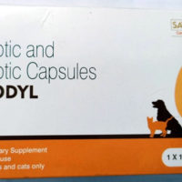 renodyl for dogs & cats