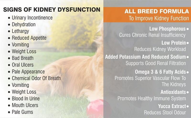 drools vet pro renal benefits